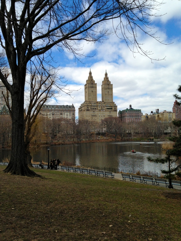 One of many iconic views at Central Park
