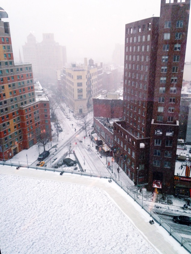 Winter Storm Juno 2015 in Manhattan