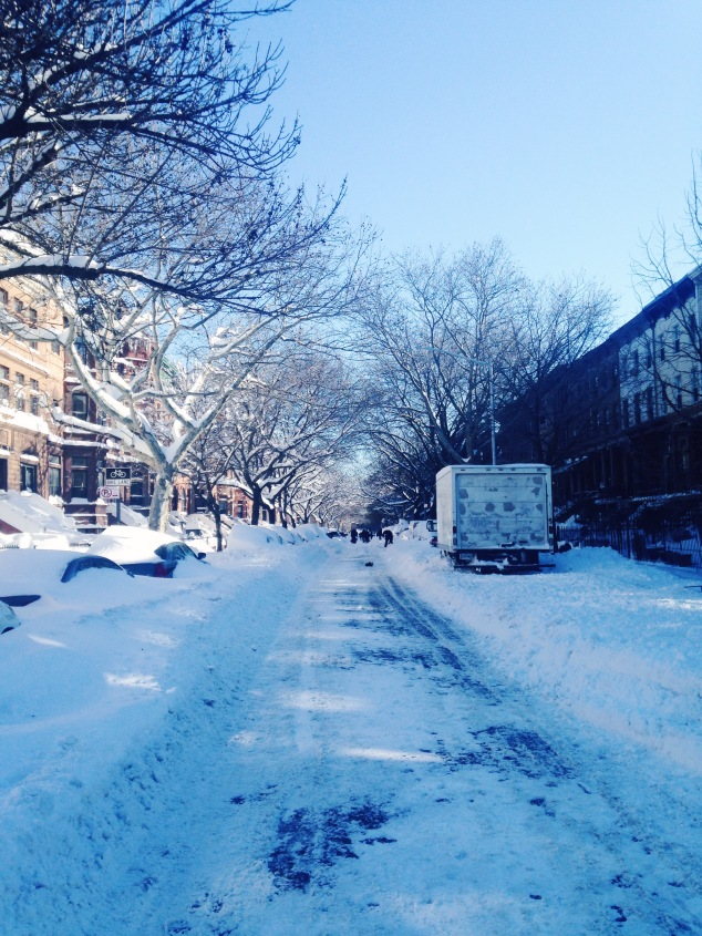 Dean Street in Crown Heights, Brooklyn, after Snowstorm Jonas
