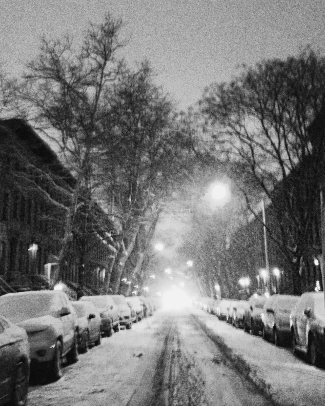 Snow in Carroll Gardens, Brooklyn
