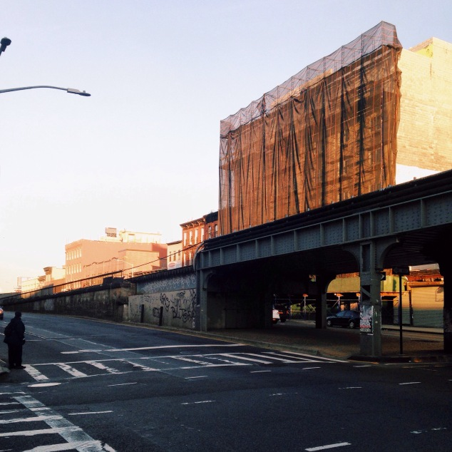 Golden Hour in Crown Heights and Bed-Stuy, Brooklyn