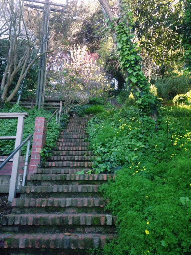 Greenwich Street steps on the way to the Coit Tower, San Francisco