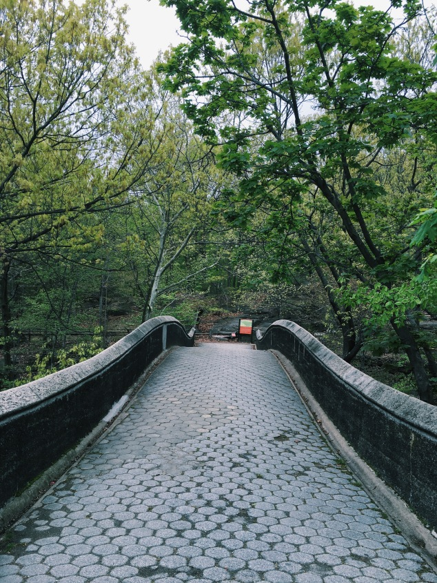 Bridge over the Bronx River