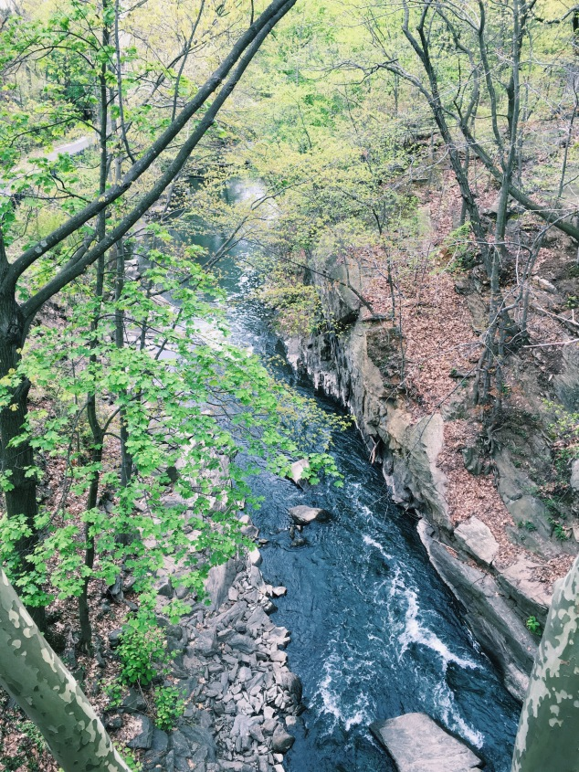 The Bronx River